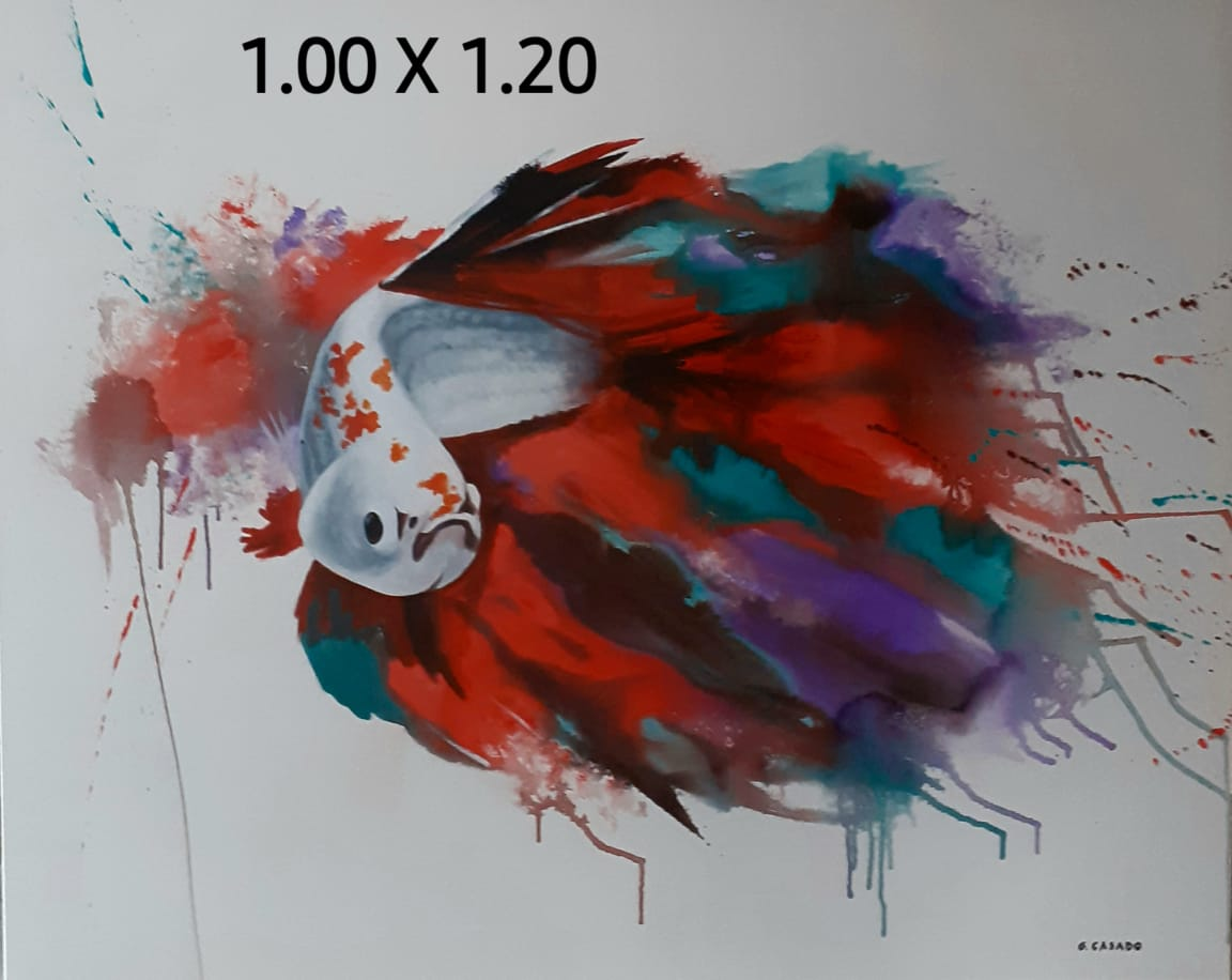 peixe-das-cores-01-1-00-x-1-20